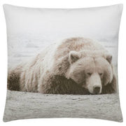 "Sleepy Bear Decorative Pillow 19"" X 19"" - $14.99 ($15.00 Off)"