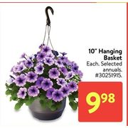 """10"""" Hanging Basket - $9.98"""